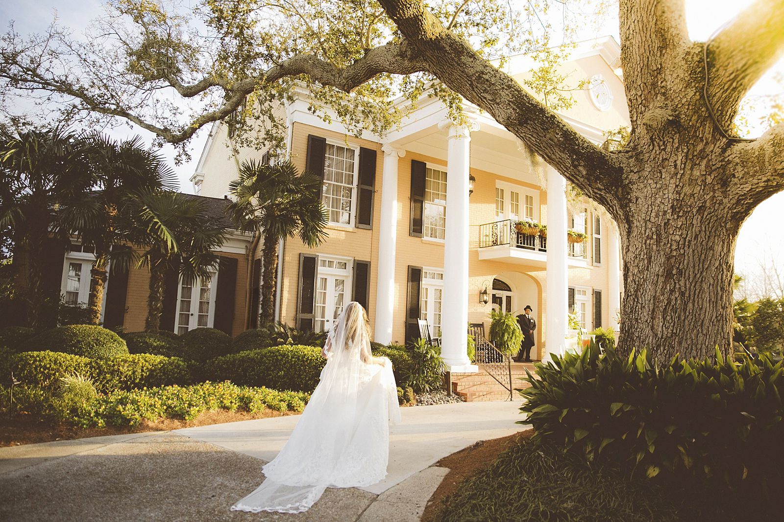 Wedding at the Southern Oaks Plantation in New Orleans. Close to the French Quarter.